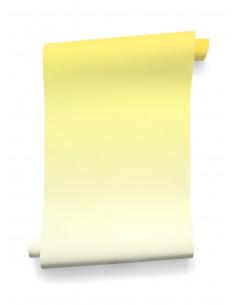 Papier peint design intissé Sunset citron prêt-à-poser by A+A Cooren