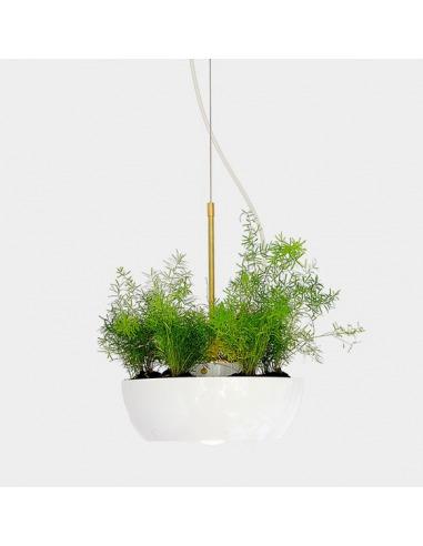 well planter light object interface